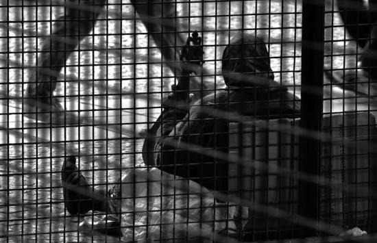 centre-culturel-pompidou-416-1