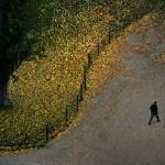 Франция. Осень