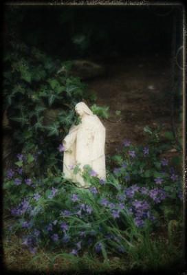 garden-guard