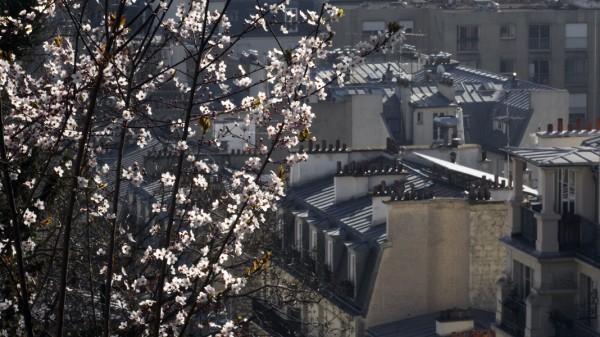Montmartre IMG_2538