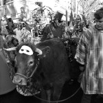 Базиль Пашкофф возродил карнавал в Париже |Basile Pachkoff a ravivé un Carnaval à Paris