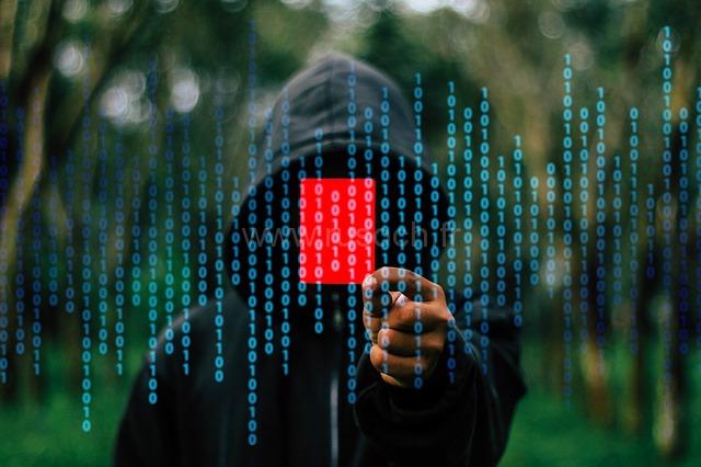 Франция в ожидании хакеров на выборах | La France anticipe des cyberattaques durant les élections