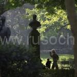 В Люксембургском саду вырубят 600 деревьев